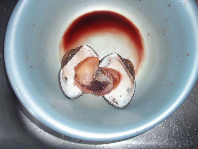 閖上の赤貝: シャーマンブログ(略してシャブログ)